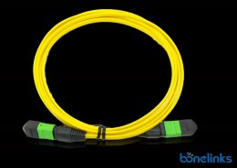 12core mpo male to mpo female pvc yellow BMFOC4773 260x185 - High Density Patchcord