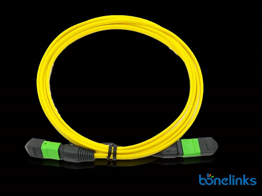 12core mpo male to mpo female pvc yellow BMFOC4773 - MTP/MPO Elite 100G Singlemode OS2 OFNP Rate Fiber Patch Cords BD-C330
