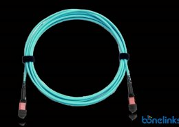 MPO Patchcord Cable BPOK5633 260x185 - High Density Patchcord