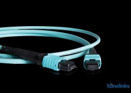 MTP Female to MTP Male Patchcord BMTFM4460 260x185 - High Density Patchcord