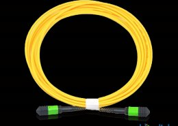 mpo m to mpo f with pvc jacket BMMF1058 260x185 - High Density Patchcord